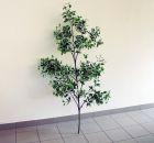 Dekopflanze ca. 160 cm